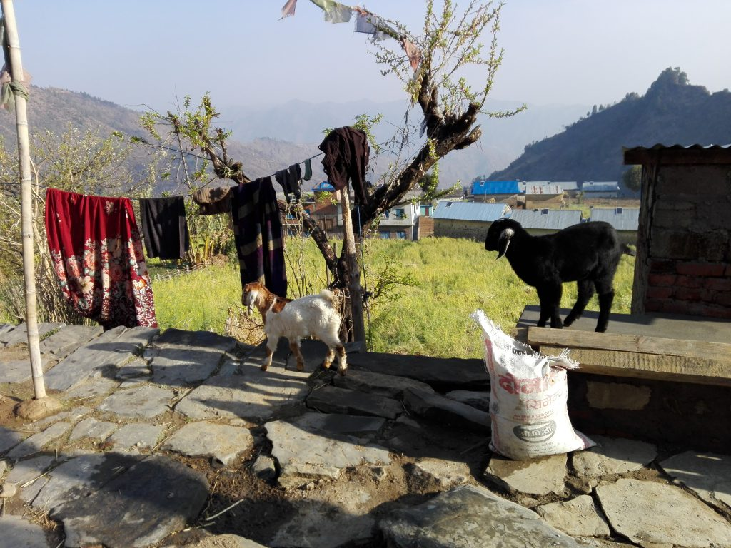 Unser Zuhause in Mate - Nepal