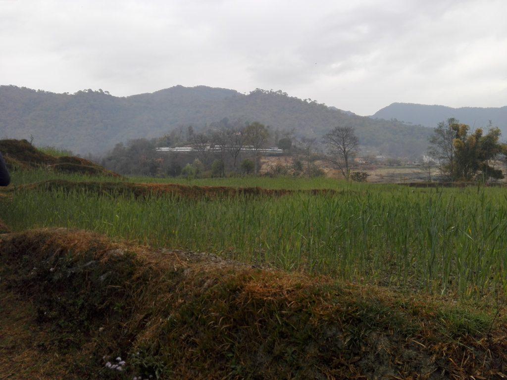 Hiking in Kathmandu