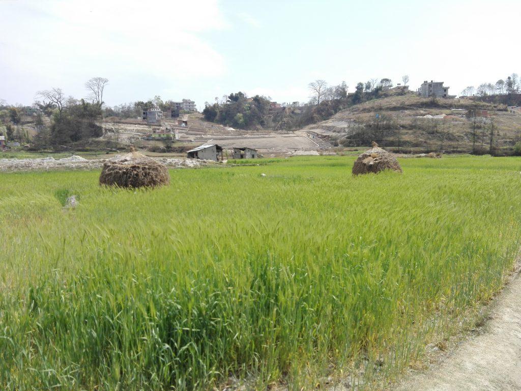 Eindrücke aus Kathmandu